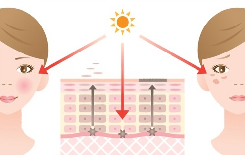 Review Skin Renewal with Nu-Factor Skincare Range
