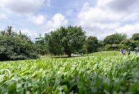 Nature's Farm Singapore Revamps Flagship Store