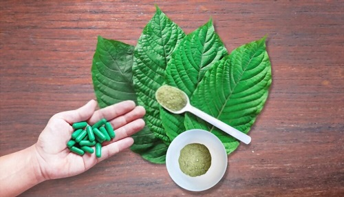 What You Need To Know About Kratom And Its Effects